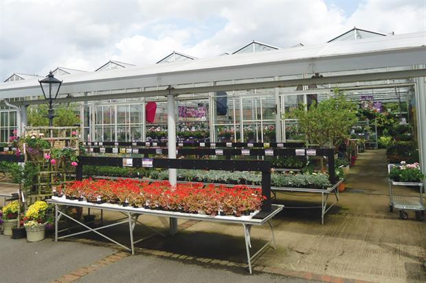 Garden centres: Coolings (main) and Perrywood (inset) both say growing their own plants is essential