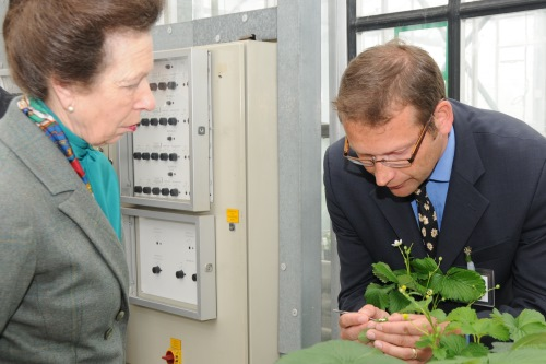 EMR researcher Adam Whitehouse demonstrates strawberry crossing to The Princess Royal - image:EMR