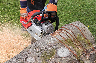 Solo 665 chainsaw - image: HW