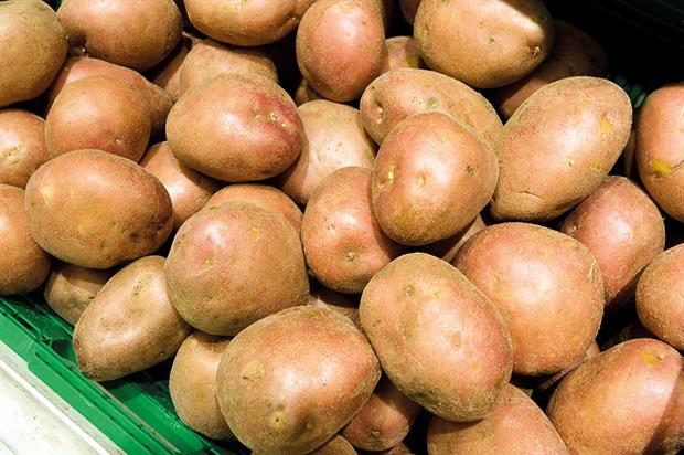 Potatoes: high-volume threat now comes from Belgium - image: HW