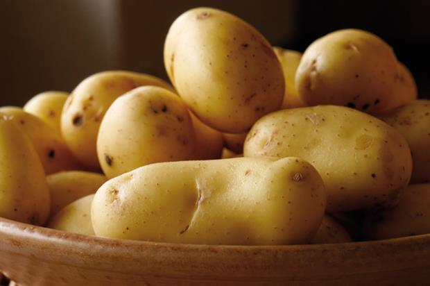 Potatoes: campaign timed to coincide with main crop harvesting
