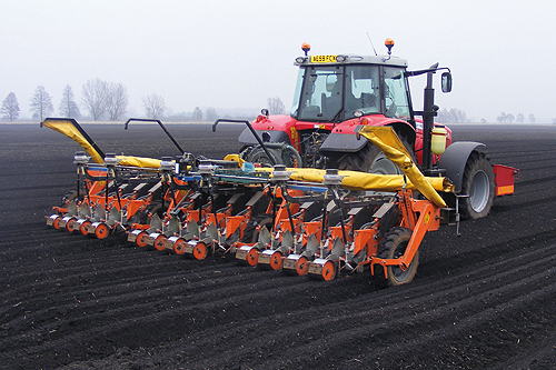 Carrot growers are likely to be undeterred by recent hard winters - image: Ian Gillot