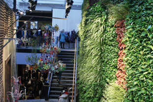Interior living wall at Anthropologie, Regent St, London - image:HW