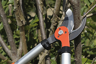 Emak UK has expanded its distribution agreement for supplying Bahco professional forestry and leisure gardening tools - image: Emak