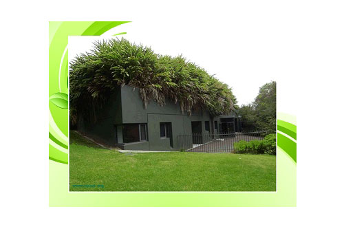 eFig webinar will discuss planting in and around buildings - image: eFIG