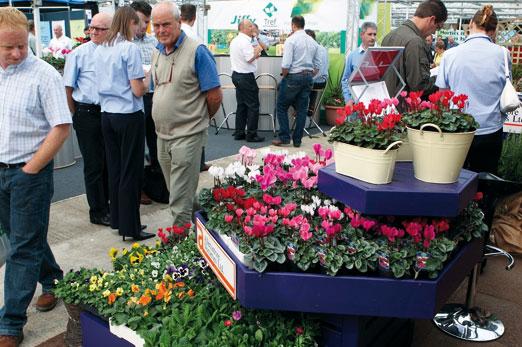 Four Oaks: Plant suppliers to battle it out