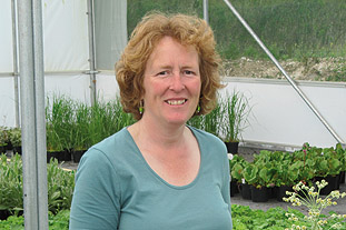 Interview - Rosy Hardy, owner, Hardy's Cottage Garden Plants - image: HW
