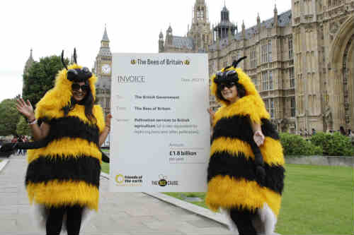 Friends of the Earth estimates bees contribute £1.8bn a year to the British economy - image: Morguefile