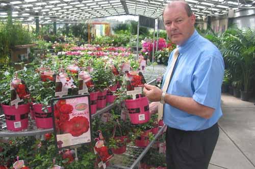 Anthony Tesselaar checking Flower Carpet® SCARLET rose plants - image: Antony Tesselaar Plants