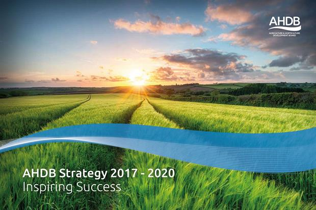 Strategy: an overall plan for work of AHDB Horticulture - image: AHDB Horticulture