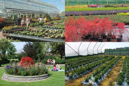 Horticulture Week surveys the year ahead