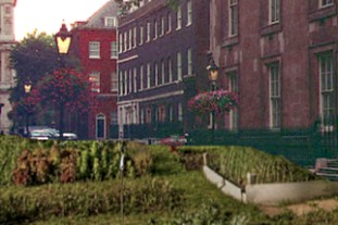 how the Downing St allotment will look - image:HW