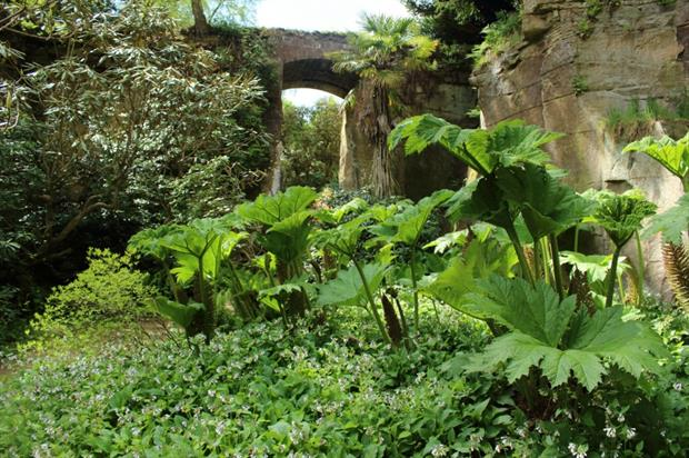 The Quarry Gardens. Image: Colin Gregory/Flickr/Creative Commons