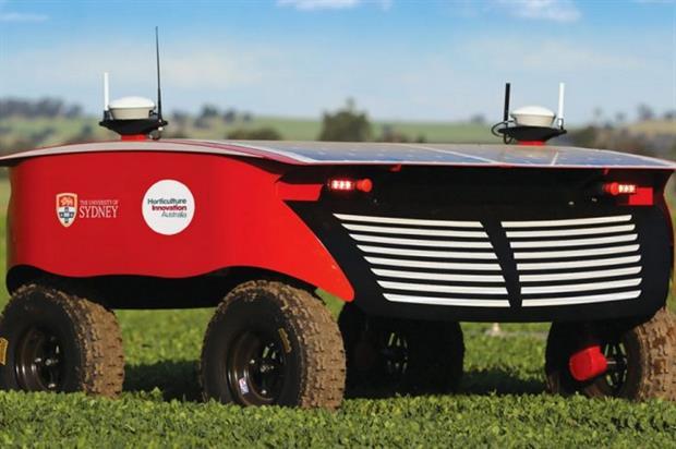 Image: Horticulture Innovation Australia