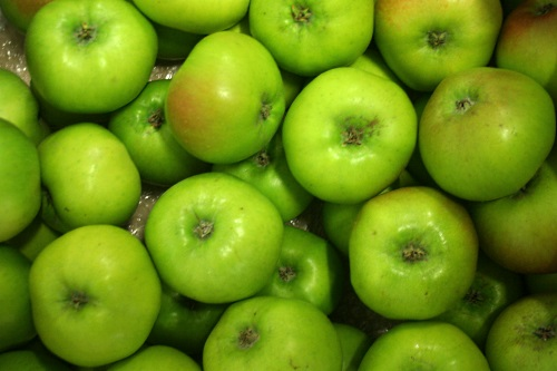 Bramley apples - image:HW