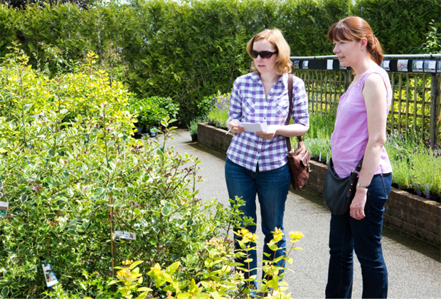 Young shoppers are spending more on their gardens