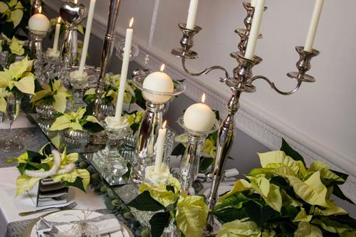 Poinsettia displays - image: HW