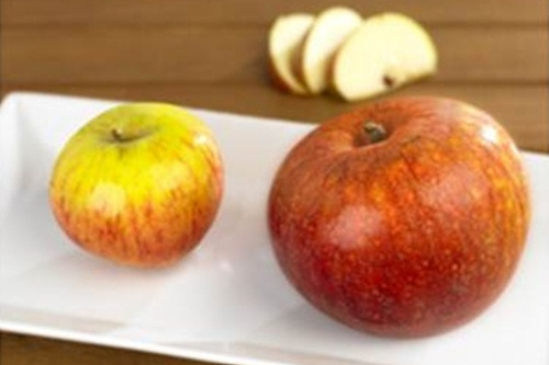 Regular and Extra Large apples - image:Waitrose