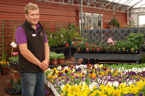 Westland Star of the Future - Matthew Lowe, Merryhatton Garden Centre - image: HW