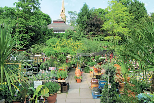 Garden centres: retail experience and good people skills are crucial for staff in helping customers or garden designers choose the best plants - image: HW