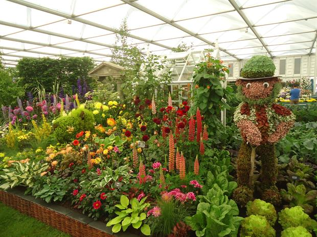 Fifty Years of Bloom at Chelsea