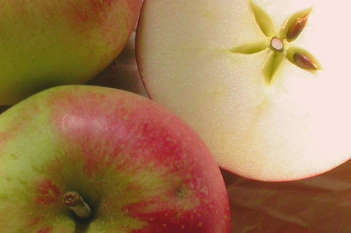 Discovery apples - image:Nick Saltmarsh