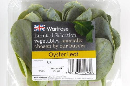 Oyster leaf pack - image: Waitrose