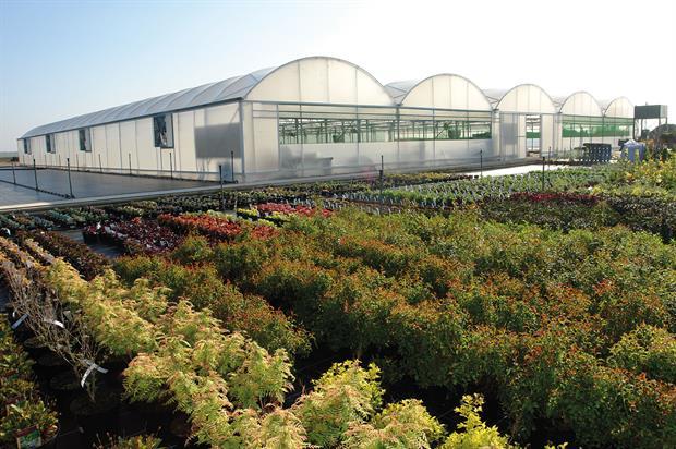 Polytunnels | Horticulture Week