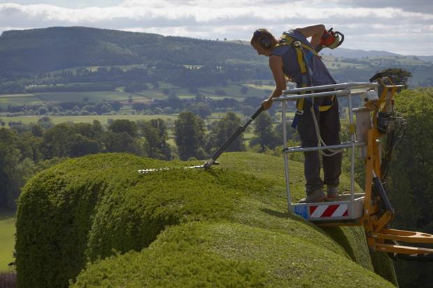 Professional gardening at Powis Castle and Garden. Image: National Trust/Arnhel de Serra