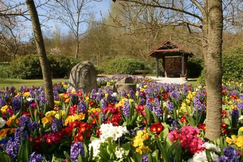Telford Town Park  - image: Telford and Wrekin Council