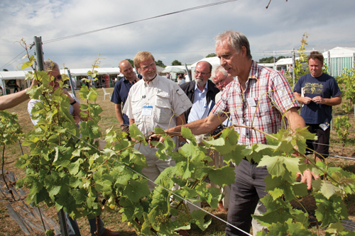 Fruit Focus: the line-up for this year's show at East Malling Research Centre in Kent has been tailored for growers and suppliers in soft fruit, top fruit and vines - image: © Phil Clarke-Hill