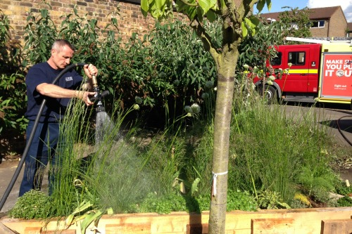 Firefighter gets watering at the Edible Bus Stop community garden in Vauxhall