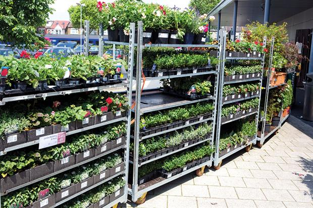 Supermarket plants: Waitrose among retailers and growers to defend the quality of supply and value for money - image: HW