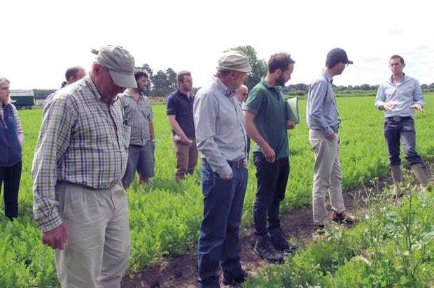 GREATsoils: the first project demonstration in a series of field trials was held on 6 July at two sites in East Anglia - image: Angela Huckle