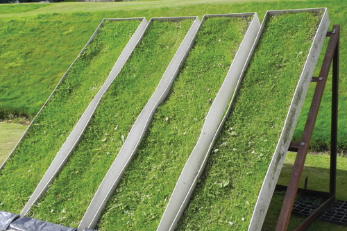 Grass seeding solutions