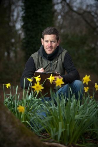Trelissick head gardener TomClarke counts daffodils. Picture: Steven Haywood