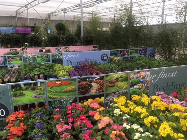 Allensmore Nurseries showcases retail concepts for garden centre ...