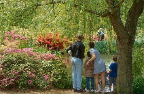 A family enjoys the Isabella Plantation. Copyright Martin Jones.