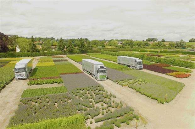 Johnsons of Whixley sells six million plants a year. Image: Johnsons