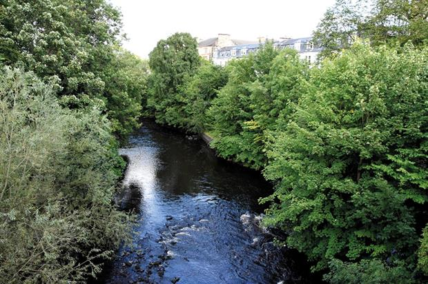 Kelvingrove Park: online petition aiming to save trees - image: Tom Ballard