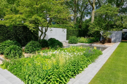 The Laurent-Perrier Garden at RHS Chelsea Flower Show