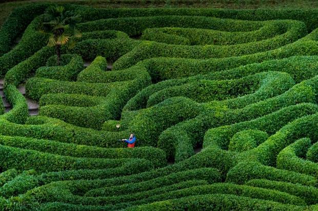 Garden manager Jon O'Donoghue. Picture: Steven Haywood/National Trust