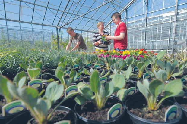 Training: experts say it is important to ensure that horticulture's needs are met when new courses are developed