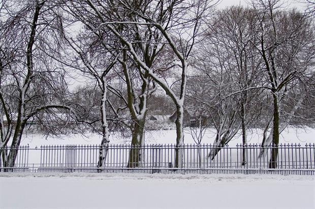 Queen's Park, Glasgow - image: Flickr/Raymond McRae (CC BY 2.0)