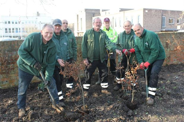 Havering Council's grounds maintenance staff at work on the first stage of the project