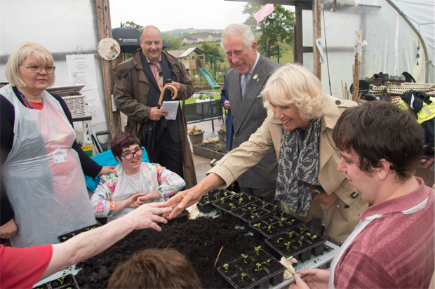 The Duke and Duchess meet volunteers in the garden. Image: Copyright Richard Davis for Scotland's Gardens Scheme