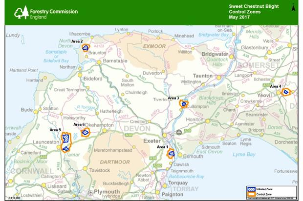 Image: Forestry Commission