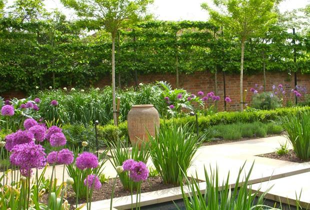Shortlisted water garden design by Sue Townsend