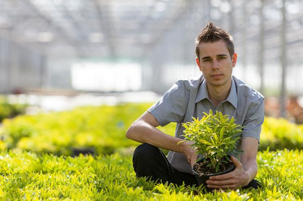 Steve Austin, product manager, Hillier Nurseries - image: Hillier Nurseries