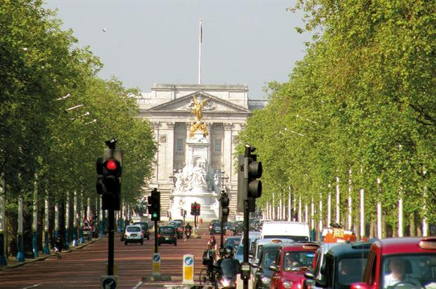 The Mall: report has warned that arrival of tree pathogen could render London vistas unrecognisable for decades - image: Luke's Photos